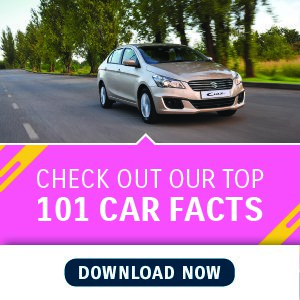 101 Car Facts eBook