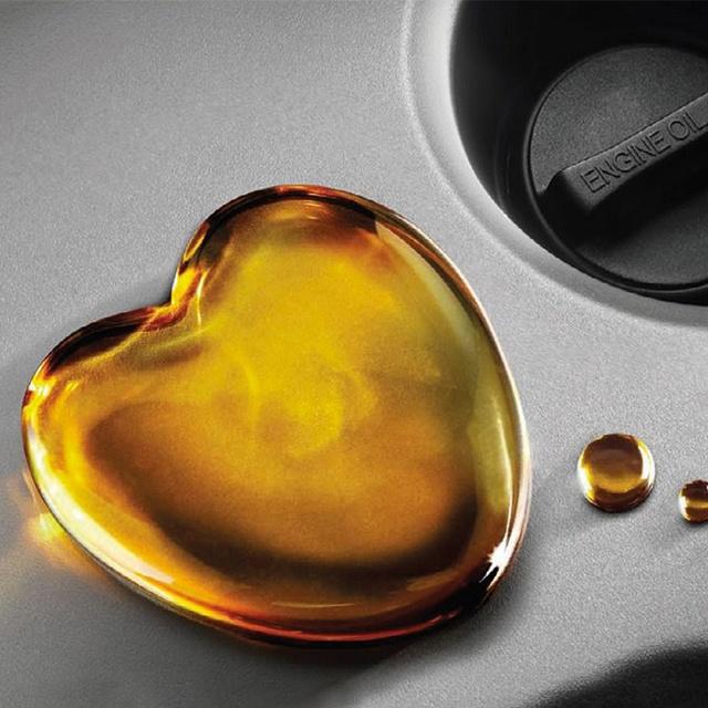Suzuki Oil